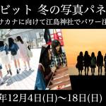 「つりビット 冬の写真パネル展 ~赤坂サカナに向けて江島神社でパワー注入!~」開催!!