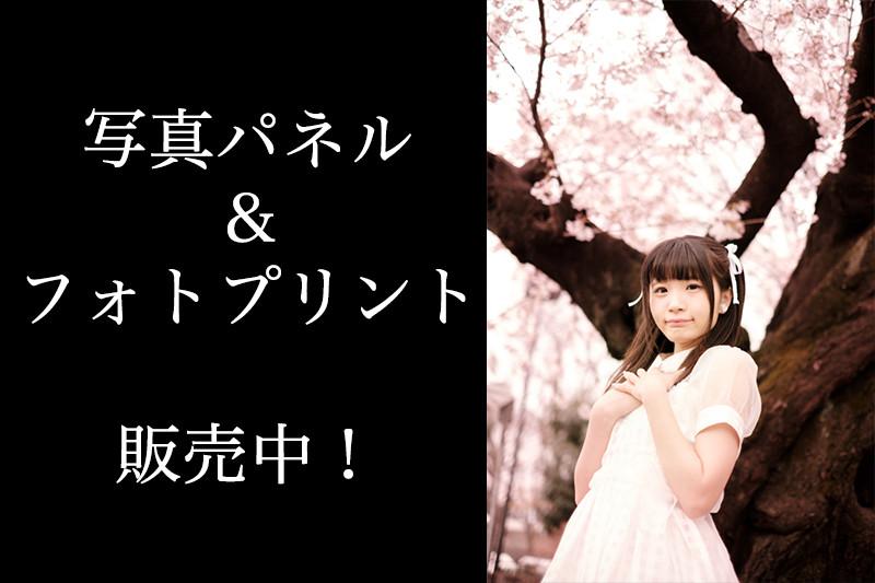 nishihiyori_eyecatch