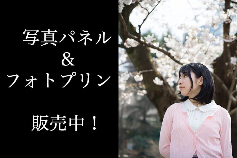 taiga_catch