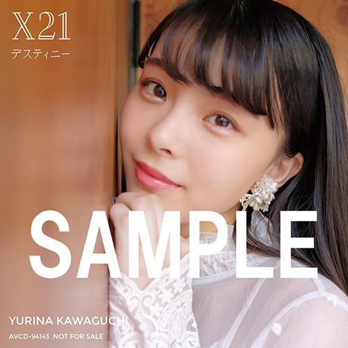 jak_kawaguti02